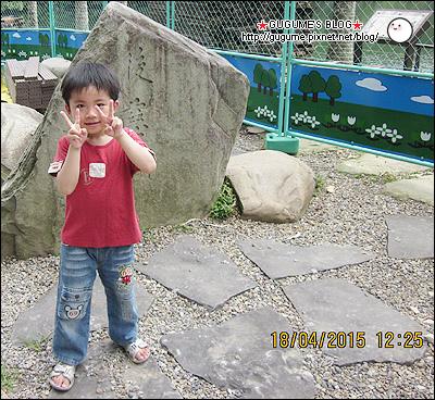 IMG_7949s.jpg