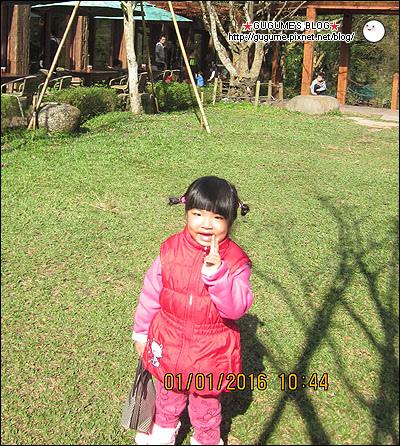 IMG_8511s.jpg