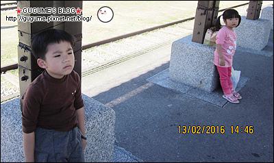 IMG_8591S.jpg