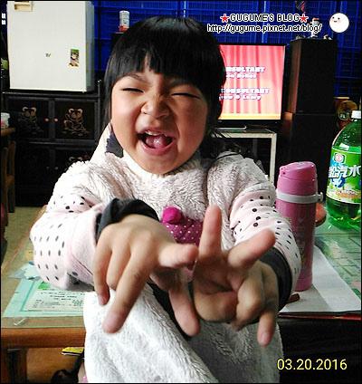 P_20160320_132248_1_ps.jpg