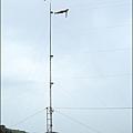 tpwc-53.JPG