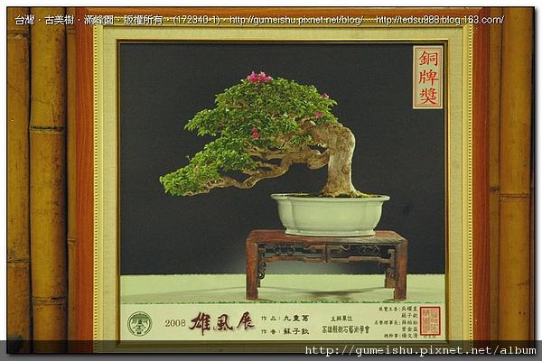 172340-1.jpg