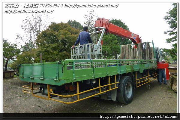 P1260404-1.jpg