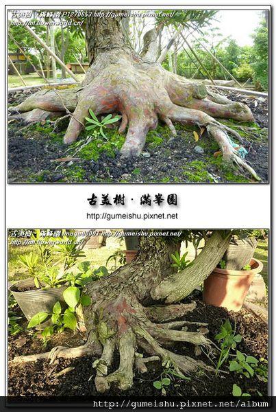 廣-20110501-01.jpg
