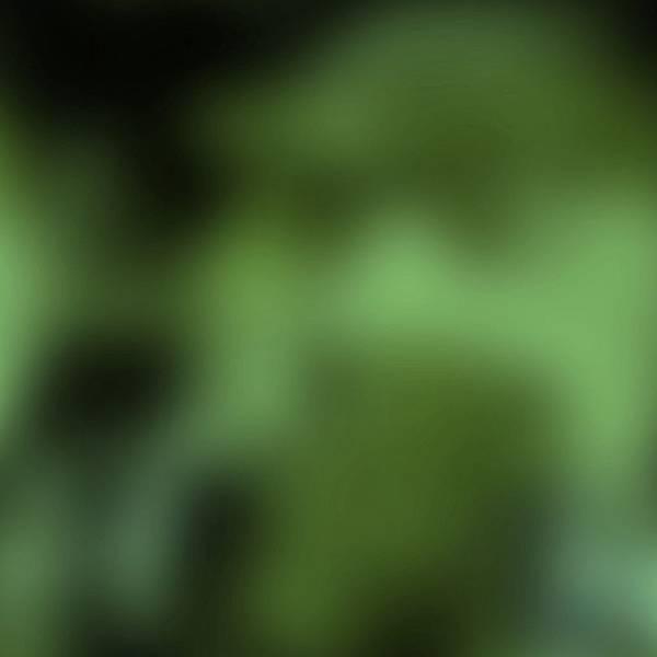 22f081ab854de7b4af61949b1ad2eea7.jpg