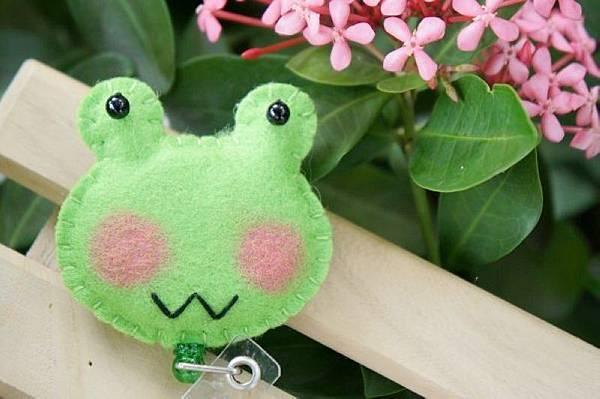 W小青蛙NT120.jpg
