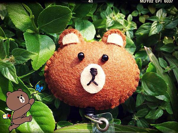 LINE熊大NT150