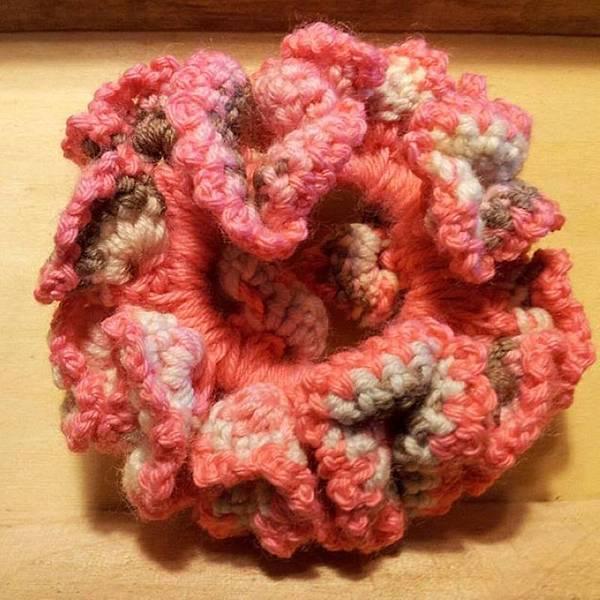 繽紛編織髮束-粉紅咖啡色NT150.jpg