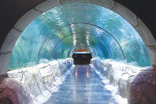 img2.海底隧道-2