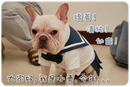 2009.11.21_PET QBEQ 秋冬新裝_006.JPG
