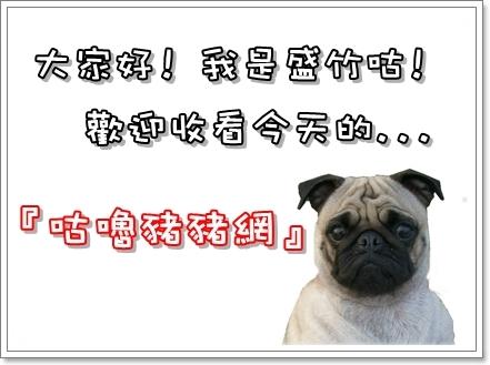 毛囊蟲治療_咕嚕豬豬網.jpg