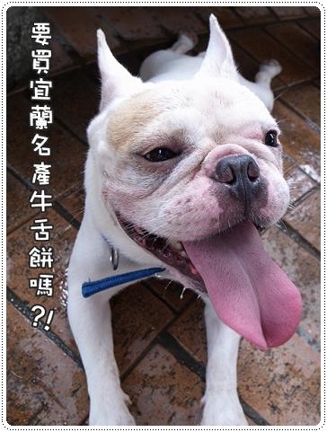 2010.07.10_宜蘭武荖坑_004.JPG