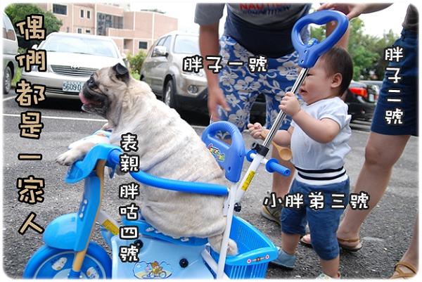 咕嚕騎單車_001