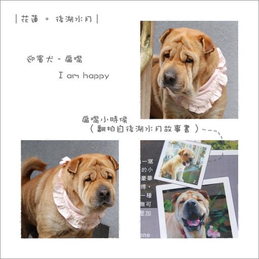 2009-12-25_花蓮行_後湖水月_001.jpg
