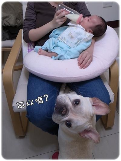 阿勇喝奶奶
