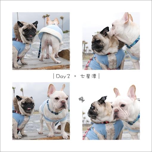 2009-12-25_花蓮行