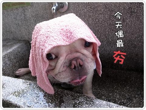 2010.07.10_宜蘭武荖坑_003.JPG