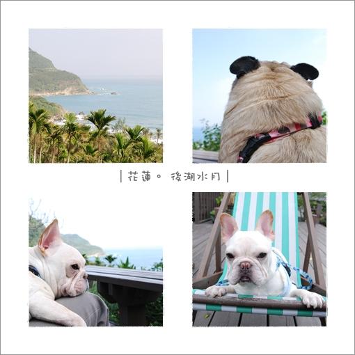 2009-12-25_花蓮行_後湖水月_007.jpg