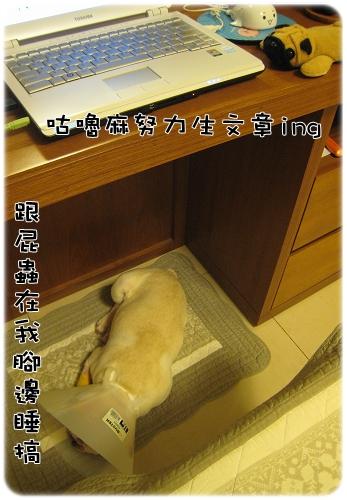 2009.08.06_阿勇的蛋蛋不見了_011.JPG