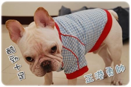 2009.11.21_PET QBEQ 秋冬新裝_002.JPG