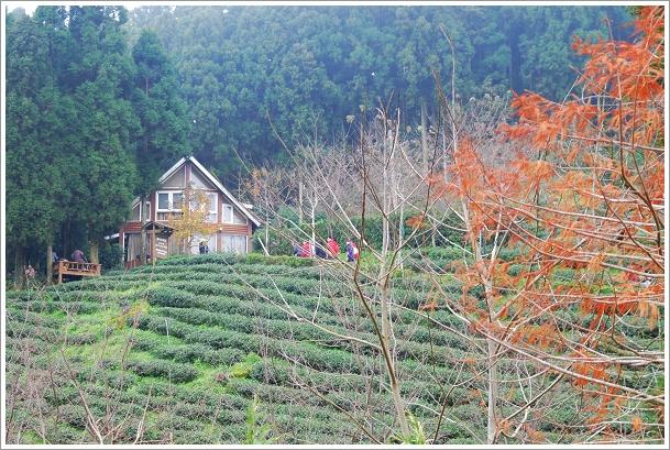 2010-01-01_山上人家_016.jpg