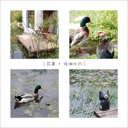 2009-12-25_花蓮行_後湖水月