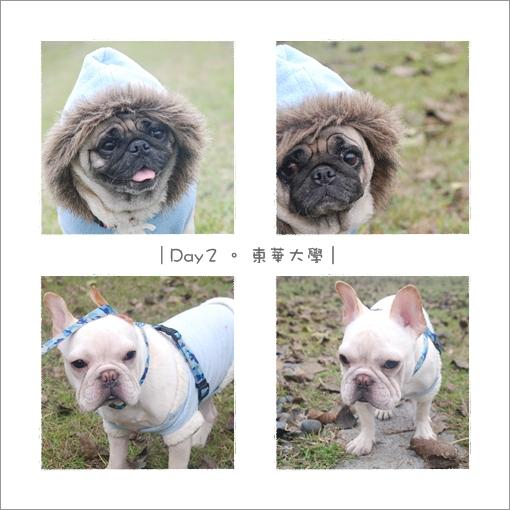 2009-12-25_花蓮行_005.jpg