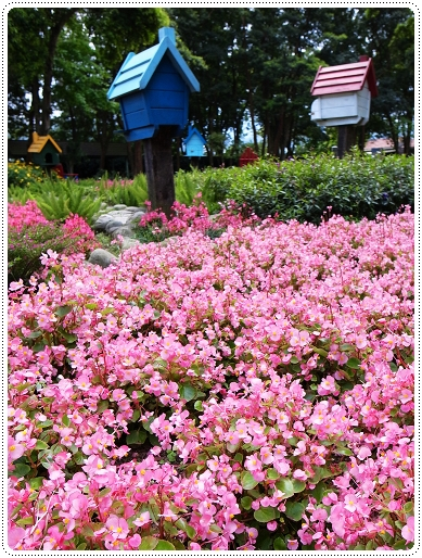 2010.03.27_大溪河岸農莊_003.jpg