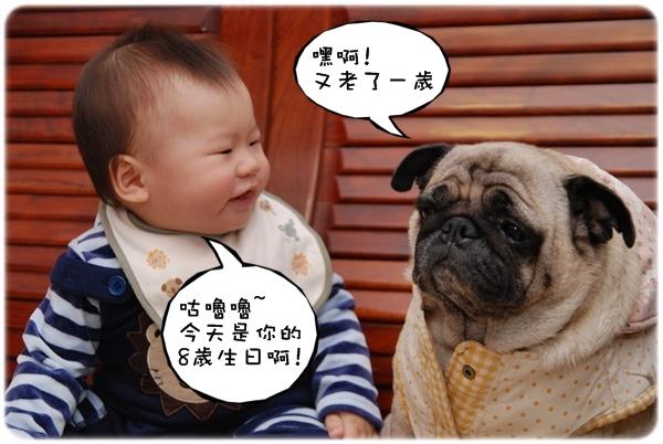 2009.12.06_咕嚕嚕8歲生日趴_008.jpg