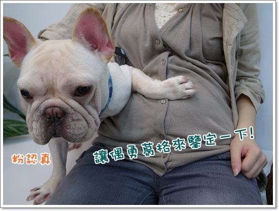 2010-11-18_阿勇葛格_004