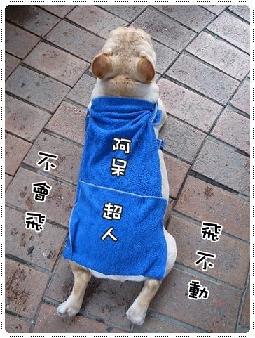 2010.07.10_宜蘭武荖坑_012.JPG