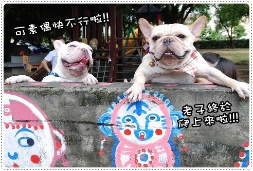 台中-彩虹眷村_022.jpg