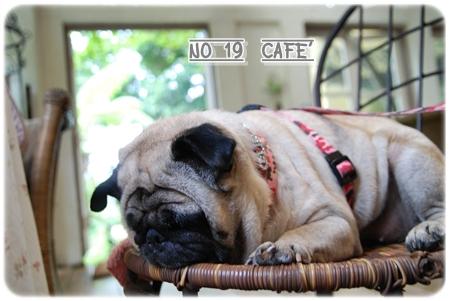 No.19Cafe'_027.JPG