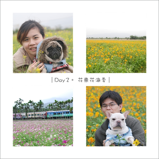 2009-12-25_花蓮行_009.jpg