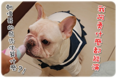 2009.11.21_PET QBEQ 秋冬新裝_010.JPG