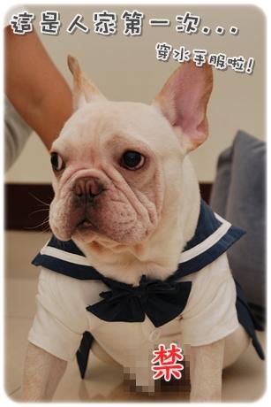 2009.11.21_PET QBEQ 秋冬新裝_007.JPG