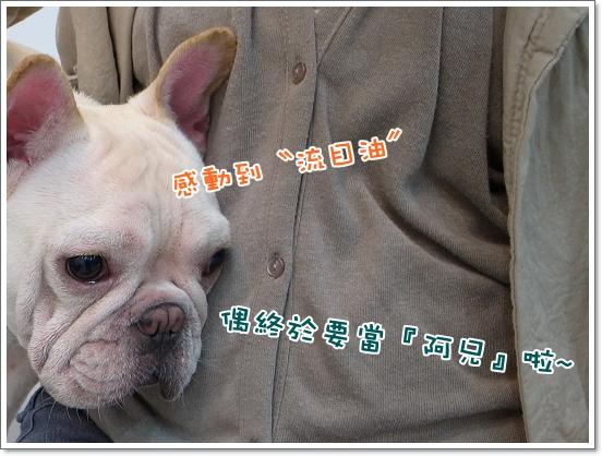 2010-11-18_阿勇葛格_005