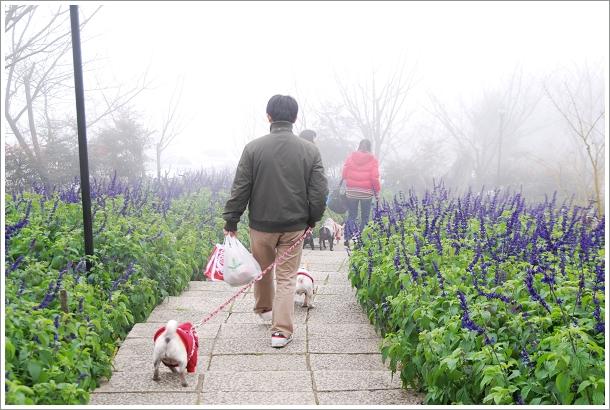 2010-01-01_山上人家_024.jpg