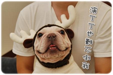 2009.11.21_PET QBEQ 秋冬新裝_012.JPG