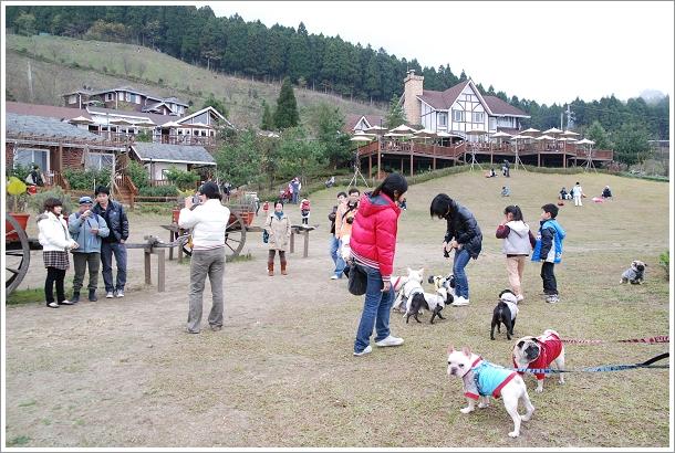 2010-01-01_山上人家_017.jpg