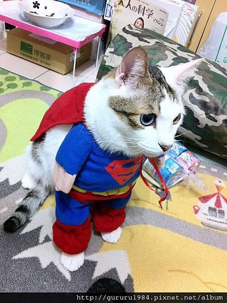 波蘿超人+披風