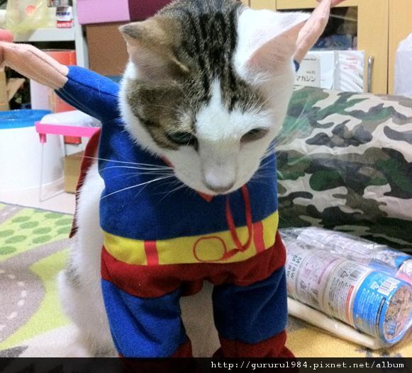波蘿超人飛阿