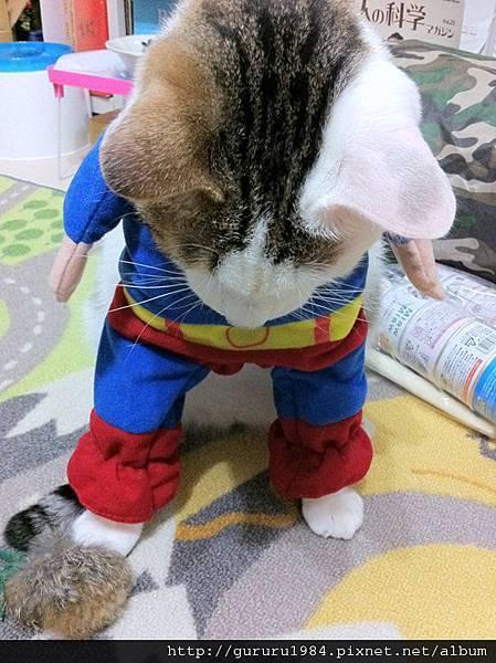 波蘿超人之我踩
