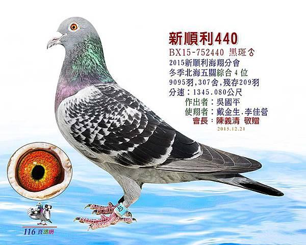 2015新順利冬北海五關4(吳國平)