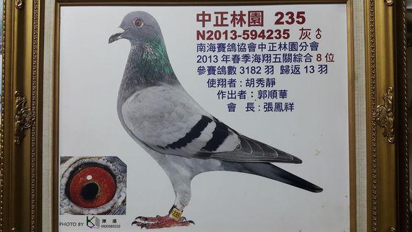 中正林園235
