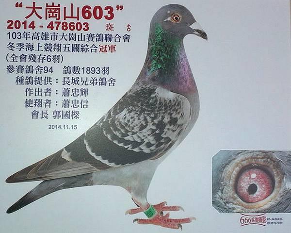 大崗山603-1