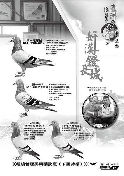 長城莊鐙福16-1