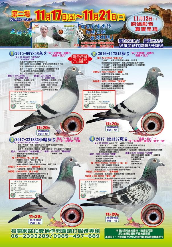 莊鐙福網拍組稿p2-1
