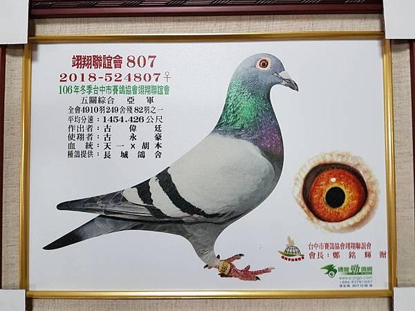 106年冬台中翊翔聯誼會五關綜合亞軍.jpg