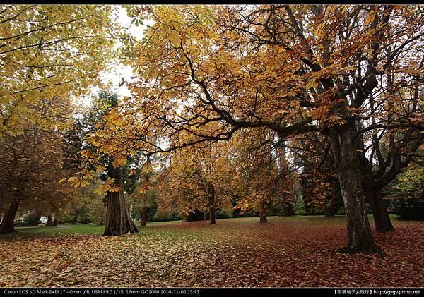 溫哥華 史丹利公園秋景